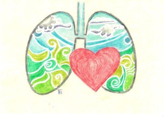 spirometria pediatrica disegno polmoni e cuore aria pulita